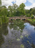 bibury coln cotswolds gloucestershire河 免版税库存图片