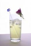 Bicarbonate de soude de limette de citron et agitateur glacés de cristal Photographie stock libre de droits