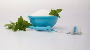 Bicarbonato de sódio, hortelã e uma escova de dentes para o alvejante natural Imagem de Stock Royalty Free