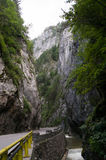 Bicaz canyon Royalty Free Stock Images