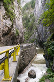 Bicaz canyon Stock Photo