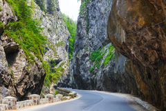 Bicaz kanjon i Rumänien royaltyfri foto