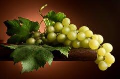 bicchiere联系人di uva酒 库存照片