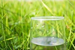 Bicchiere d'acqua Fotografie Stock Libere da Diritti