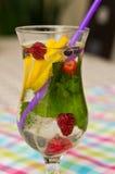 Bicchiere d'acqua con frutta variopinta e paglia Fotografie Stock Libere da Diritti