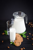 Bicchiere di latte con la menta dei biscotti della brocca Fotografia Stock