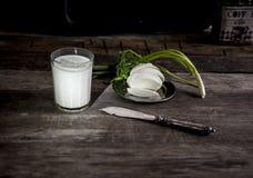 Bicchiere di latte, mozzarella e cipolla su una vecchia tavola di legno Fotografia Stock