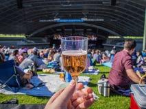 Bicchiere di vino al concerto Immagini Stock Libere da Diritti