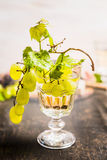 Bicchiere di vino con l'uva fresca su un ramo dentro sulla fine di legno scura del fondo su fotografie stock