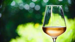 Bicchiere di vino con vino rosato Fotografia Stock Libera da Diritti