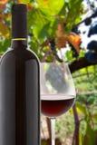 Bicchiere di vino e bottiglia di vino rosso Fotografie Stock Libere da Diritti