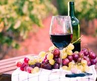 Bicchiere di vino ed uva matura sulla tavola in vigna Immagine Stock