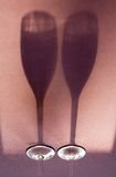 Bicchieri di vino dell'ombra Fotografia Stock