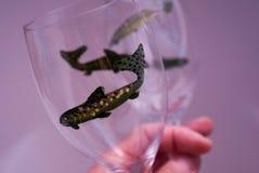 Bicchieri di vino dipinti a mano Immagini Stock