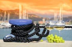 Bicchieri di vino ed uva Fotografia Stock Libera da Diritti