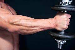 Bicep с весом руки стоковые фотографии rf