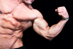 Bicep close up. Isolated on black background Royalty Free Stock Images