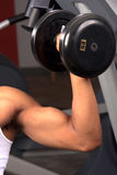 Bicep curl Royalty Free Stock Photography