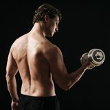 Bicep curl rear view Royalty Free Stock Images