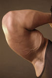 Bicep flexed Stock Photos
