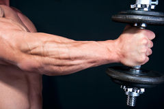 Bicep with hand weight royalty free stock photos