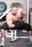 bicepsów target2155_1_ Obrazy Royalty Free