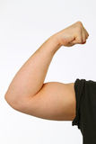 Biceps. Man shows his biceps on white background. Shot in studio royalty free stock photos