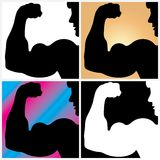 Biceps Stock Image