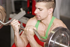 Biceps bar exercises. Young man with weights bar training biceps in close up image at gym stock image