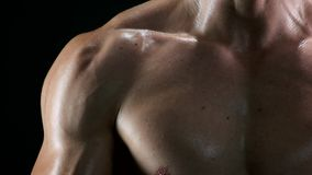 Biceps and chest muscles of athletic man. stock footage