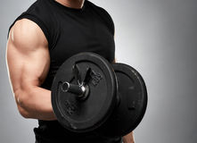 Biceps curl with dumbbell on grey background Royalty Free Stock Image