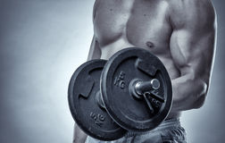 Biceps curl with dumbbell on grey background Stock Photos
