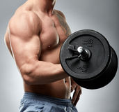 Biceps curl with dumbbell on grey background Royalty Free Stock Photo