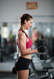 Biceps curl training lady. Young woman doing biceps curl with dumbbell in a gym royalty free stock photography
