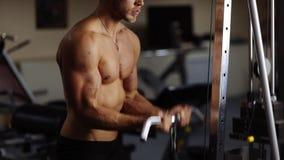 Biceps curls in machine. Loop stock video footage