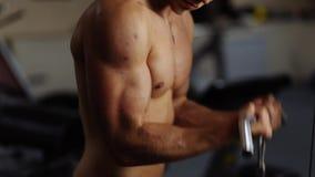 Biceps curls in machine stock video
