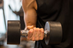 Biceps dumbbell Royalty Free Stock Photos