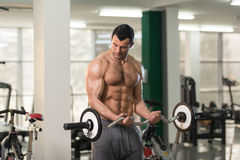 Biceps Exercise With Barbell in a Gym. Healthy Hairy Man Working Out Biceps In A Fitness Center Gym Stock Photography