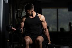 Biceps Exercise With Dumbbells In A Gym. Healthy Man Working Out Biceps In A Dark Gym - Dumbbell Concentration Curls stock photos