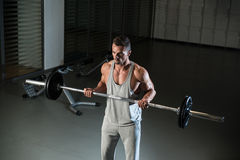 Biceps Exercise Royalty Free Stock Photo