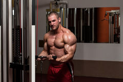 Biceps Exercise. Young Bodybuilder Doing Heavy Weight Exercise For Biceps Royalty Free Stock Images