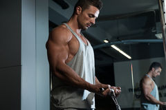 Biceps Exercise royalty free stock photography