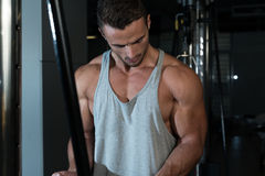 Biceps Exercise. Young Bodybuilder Doing Heavy Weight Exercise For Biceps With Cable stock images