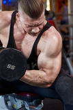 Biceps in gym a Stock Image