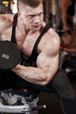 Biceps in gym b Stock Image