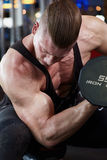 Biceps in gym c Royalty Free Stock Photos