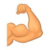 Biceps intense Isolat de symbole de vecteur de gymnase Illustration de dessin animé Photos libres de droits
