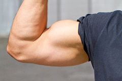 Biceps of a man Stock Images