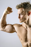 Biceps muscle of young man Stock Images