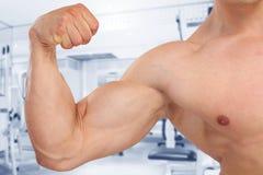 Biceps muscles strength strong power bodybuilder bodybuilding fi. Tness gym muscular man studio Royalty Free Stock Photos